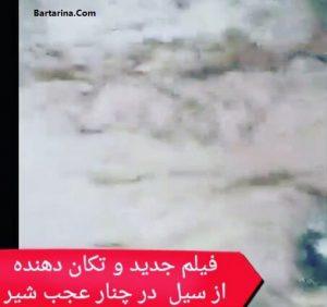 فیلم جدید سیل مرگبار در روستای چنار عجب شیر آذربایجان
