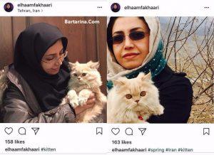 عکس گربه الهام فخاری نماینده مردم شورای شهر تهران با حیوانات
